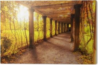 Cuadro en Dibond Hermoso parque de otoño