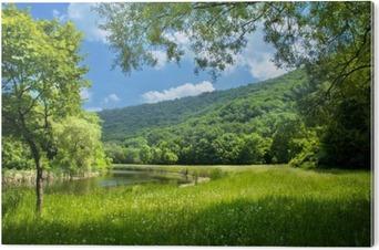 Cuadro en Dibond Paisaje de verano con el río y el cielo azul