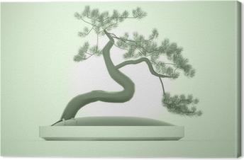 Cuadro en Lienzo Árbol bonsai de Asia en verde