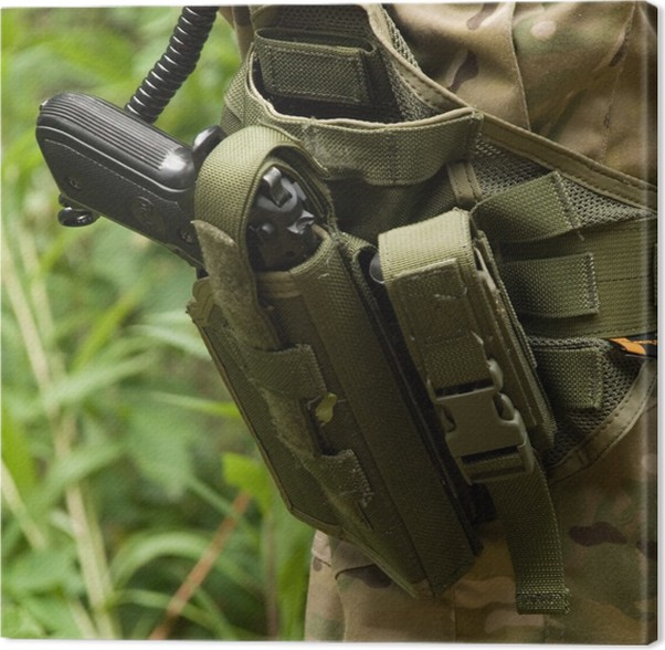 Cuadro en Lienzo Arma en la funda - diversión pistola de aire suave ...