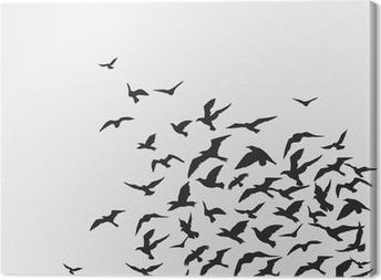 Cuadro en Lienzo Aves