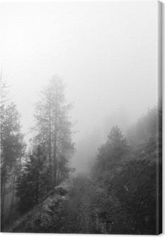 Cuadro en Lienzo Bosque Camino cubierto por la niebla