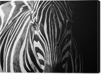 Cuadros en lienzo cebras pixers vivimos para cambiar - Cuadros de cebras ...