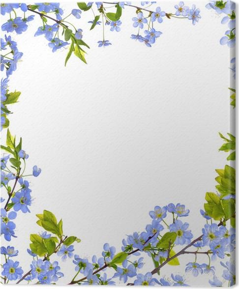 Cuadro en Lienzo Cerezo flores azules aislado marco • Pixers ...