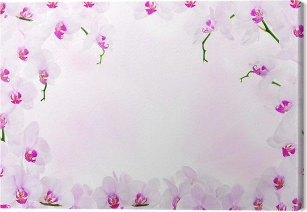 Cuadro en Lienzo Decoración de color rosa claro con marco de flores ...