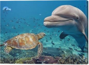 Cuadro en Lienzo Delfines y tortugas marinas bajo el agua en el filón