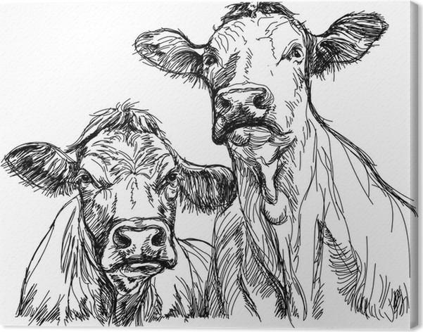 Cuadro en Lienzo Dos vacas - boceto en blanco y negro • Pixers ...