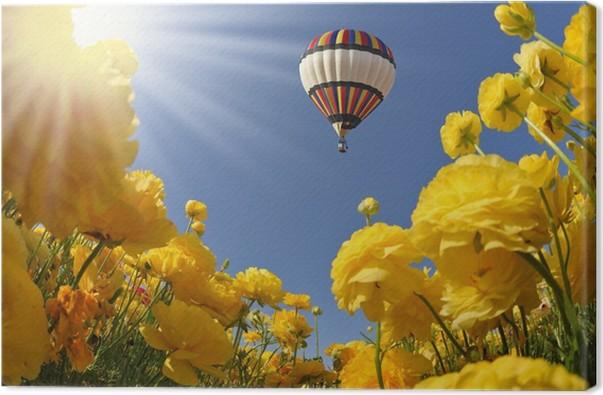 2ea7fa94e Cuadro en Lienzo El sol de primavera brilla globo volando • Pixers ...