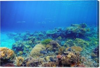 Cuadro en Lienzo Escena bajo el agua. Los arrecifes de coral, peces de colores y brillando cielo soleados
