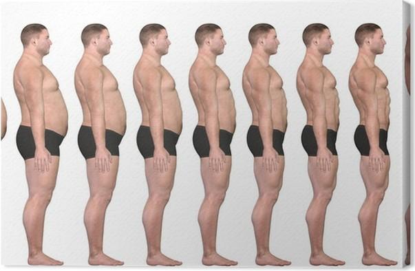 Cual es la dieta mas efectiva para bajar de peso photo 10