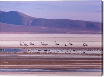 Cuadro en Lienzo Flamingo