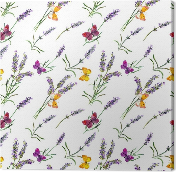 Cuadro en Lienzo Flores de lavanda, mariposas. Acuarela de patrones ...