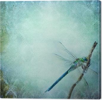 Cuadro en Lienzo Fondo elegante lamentable de la vendimia con la libélula
