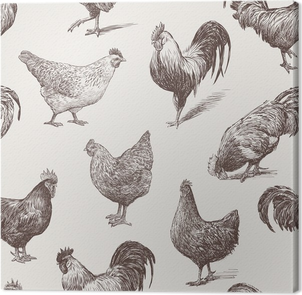 Hermosa Temas De Decoración De La Cocina Gallos Bosquejo - Ideas de ...