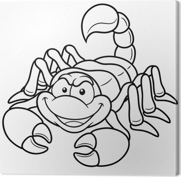 Cuadro en Lienzo Ilustración del vector del escorpión de dibujos ...