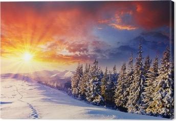 Cuadro en Lienzo Invierno