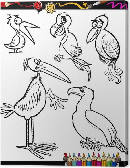 Cuadro en Lienzo Las aves de dibujos animados para colorear libro ...