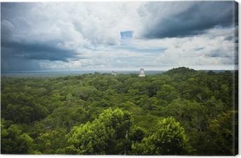 Cuadro en Lienzo Las ruinas mayas de Tikal, Guatemala sitio. Vista desde el Templo IV