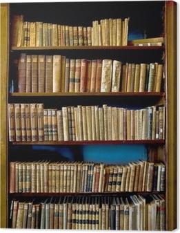 Cuadro en Lienzo Los libros de la biblioteca