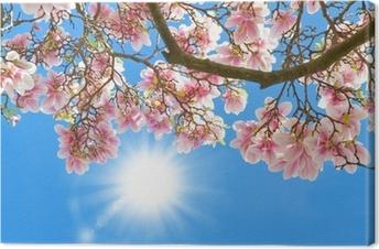 Cuadro en Lienzo Magnolia en el sol