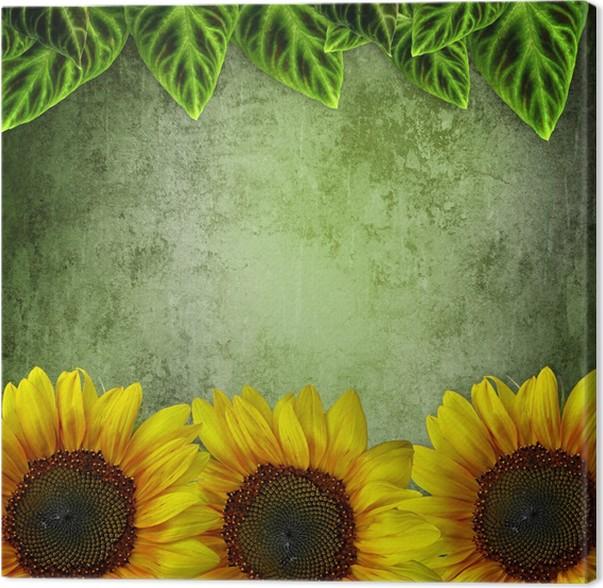Cuadro en Lienzo Marco de hojas verdes ans Girasoles en fondo del ...