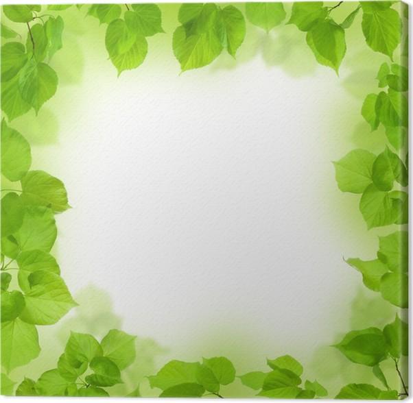 Cuadro en Lienzo Marco de hojas verdes, follaje de fondo • Pixers ...
