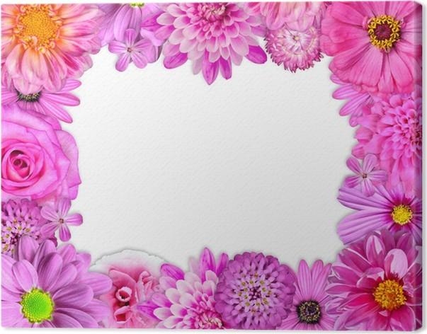 Cuadro en Lienzo Marco de la flor color de rosa, púrpura, rojo ...