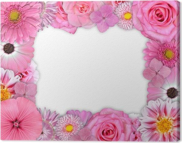 Cuadro en Lienzo Marco de la flor rosa, púrpura flores en blanco ...