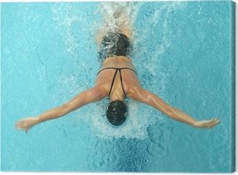 Cuadro en Lienzo Mariposa nadador