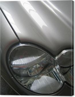 Cuadro en Lienzo Mercedes