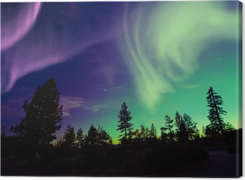 Cuadro en Lienzo Northern Lights (Aurora Borealis)