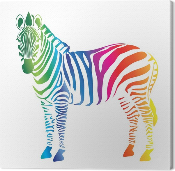 Cuadro en Lienzo Paleta de color de la cebra • Pixers® - Vivimos ...