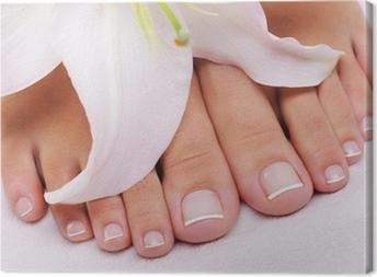 Cuadro en Lienzo Pedicure francés en un pies femeninos