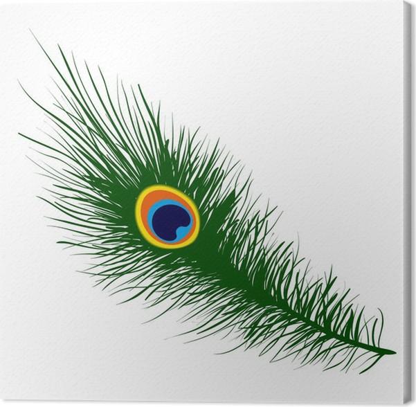 Asombroso Arte De Uñas Plumas Composición - Ideas de Pintar de Uñas ...