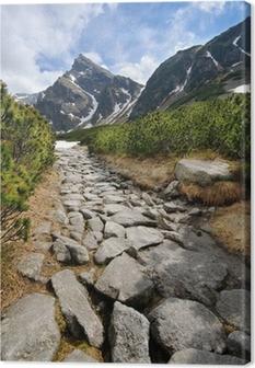 Cuadro en Lienzo Polish Tatra montañas