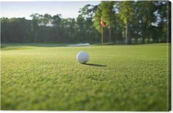 Cuadros en lienzo premium Cerca de la pelota de golf en verde