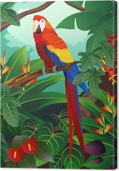 Cuadros en lienzo premium Guacamayo detallada del vector del pájaro