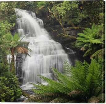 Cuadro en Lienzo Rainforest Waterfall