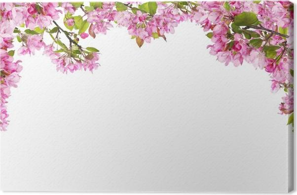 Cuadro en Lienzo Ramas de flores de manzano rosa marco de medio ...