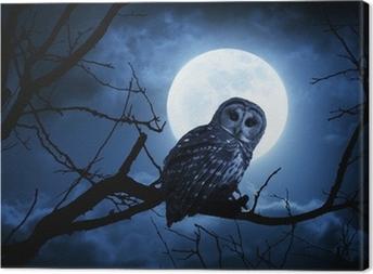 Cuadro en Lienzo Relojes Owl Intensamente iluminadas por la Luna Llena en la noche de Halloween