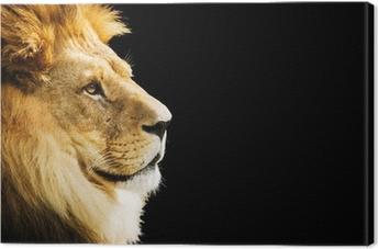 Cuadro en Lienzo Retrato del león con el espacio de la copia en fondo negro