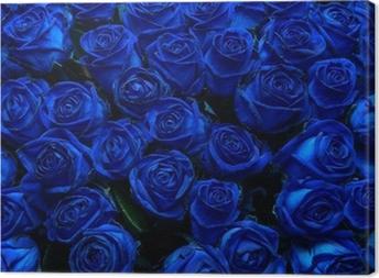 Cuadro en Lienzo Rosas azules