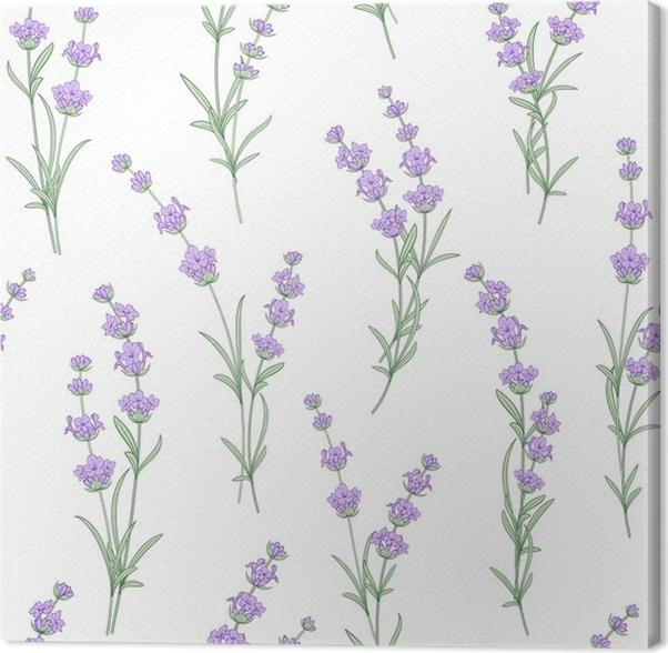 Cuadro en Lienzo Sin patrón de flores de lavanda sobre un fondo ...