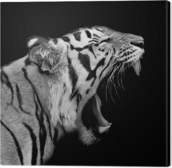 Cuadro en Lienzo Tigre de Sumatra Roaring