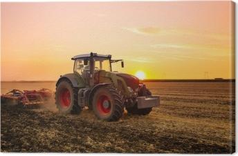 Cuadro en Lienzo Tractor en el campo de cebada de la puesta del sol.