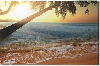 Cuadro en Lienzo Tropical beach