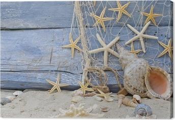 Cuadro en Lienzo Urlaubserinnerung: Posthornschnecke, Seesterne und Fischernetz