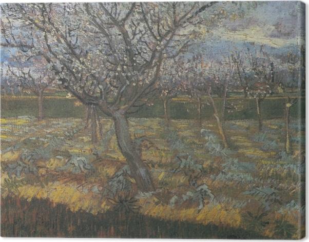 Cuadro en Lienzo Vincent van Gogh - Huerto con albaricoque en el flor - Reproductions