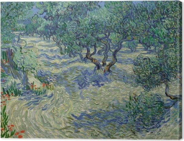 Cuadro en Lienzo Vincent van Gogh - Surco de olivos - Reproductions