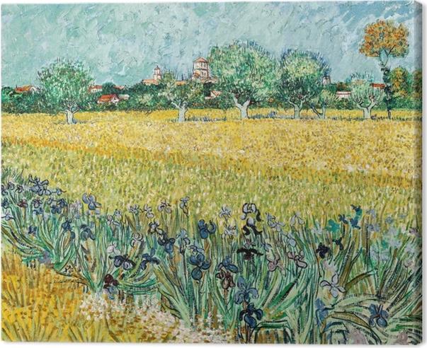 Cuadro en Lienzo Vincent van Gogh - Vista de Arles con los iris en el primer plano - Reproductions